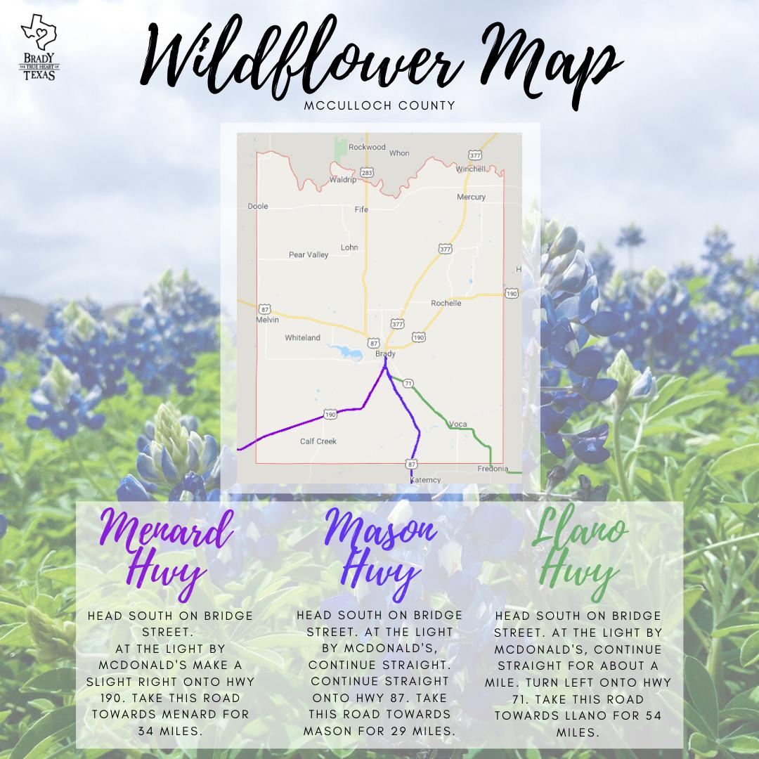 Wildflower Map