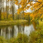 Clearwater_In_Fall_by_David_Putzier_-_RIGHTS_FREE_(2)2_gallery