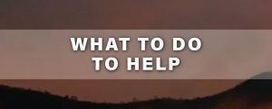 What to do to help