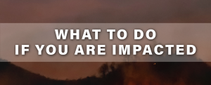 what to do if you are impacted