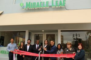 Miracle Leaf Health Center - Clematis