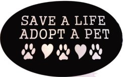 Adopt_a_pet_image_248x152