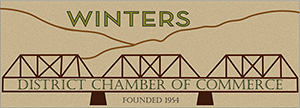 Winter Chamber logo new Final