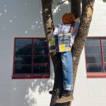 HRB Scarecrow 2