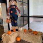 Hotel Winters Scarecrow