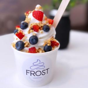 Frost frozen yogurt with berries