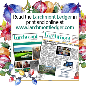 Larchmont Ledger paper in Holiday Lights