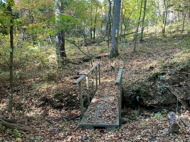 Kress Farm Yellow Trail