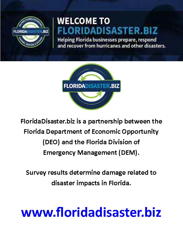 Business_Disaster_Survey_Flyer_copy2