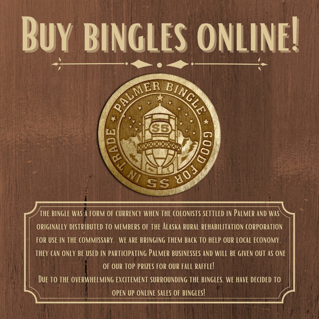 Bingle online infographic