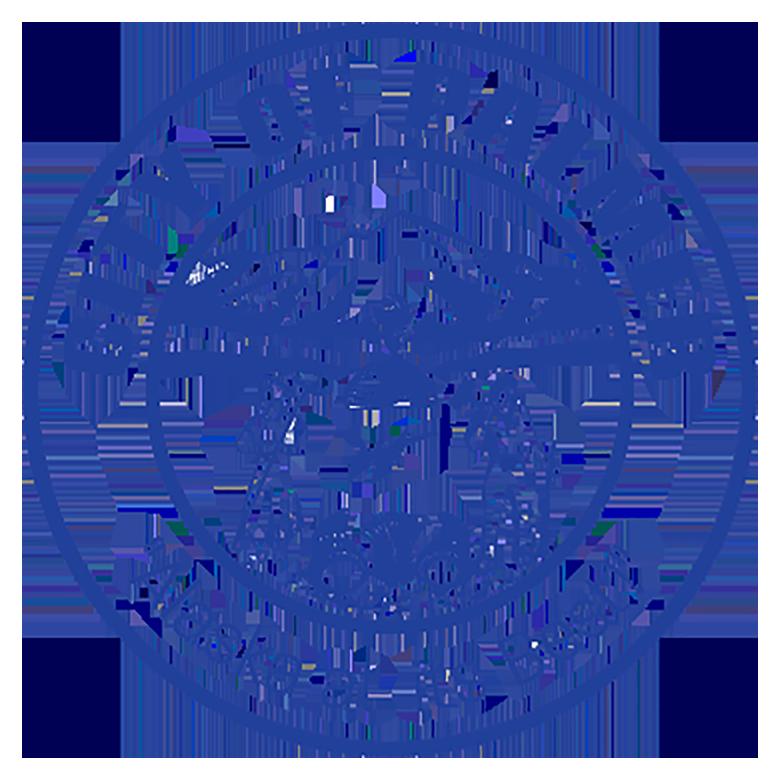 City of Palmer