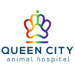 Queens City Animal Hospital