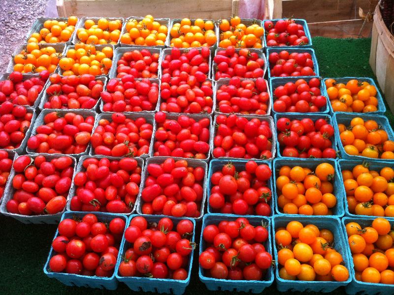 saturday-market-092212-fall-produce-028
