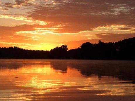sunrise4443