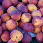Photos of fresh peaches for sale at the Galt Farmers Market