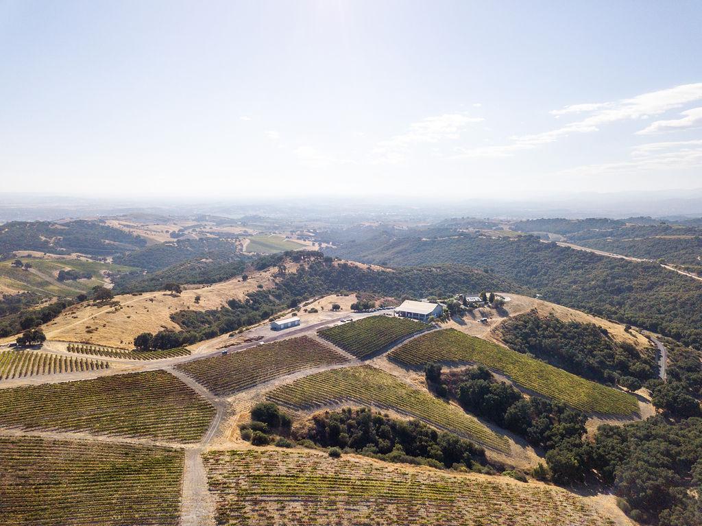Calcareous Vineyards