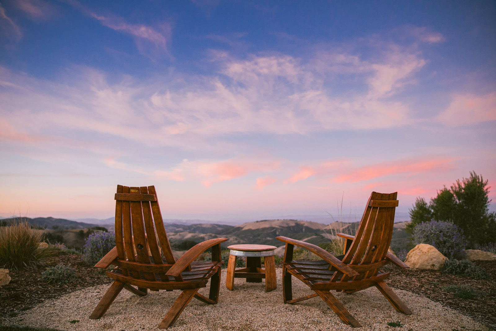 DAOU chairs
