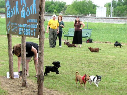 Doggie Bark Park