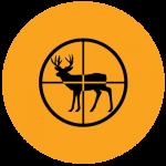 Deer.Circle
