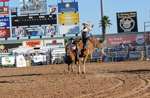 Rodeo - Horse & Arena