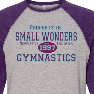 Small Wonders Gymnastics