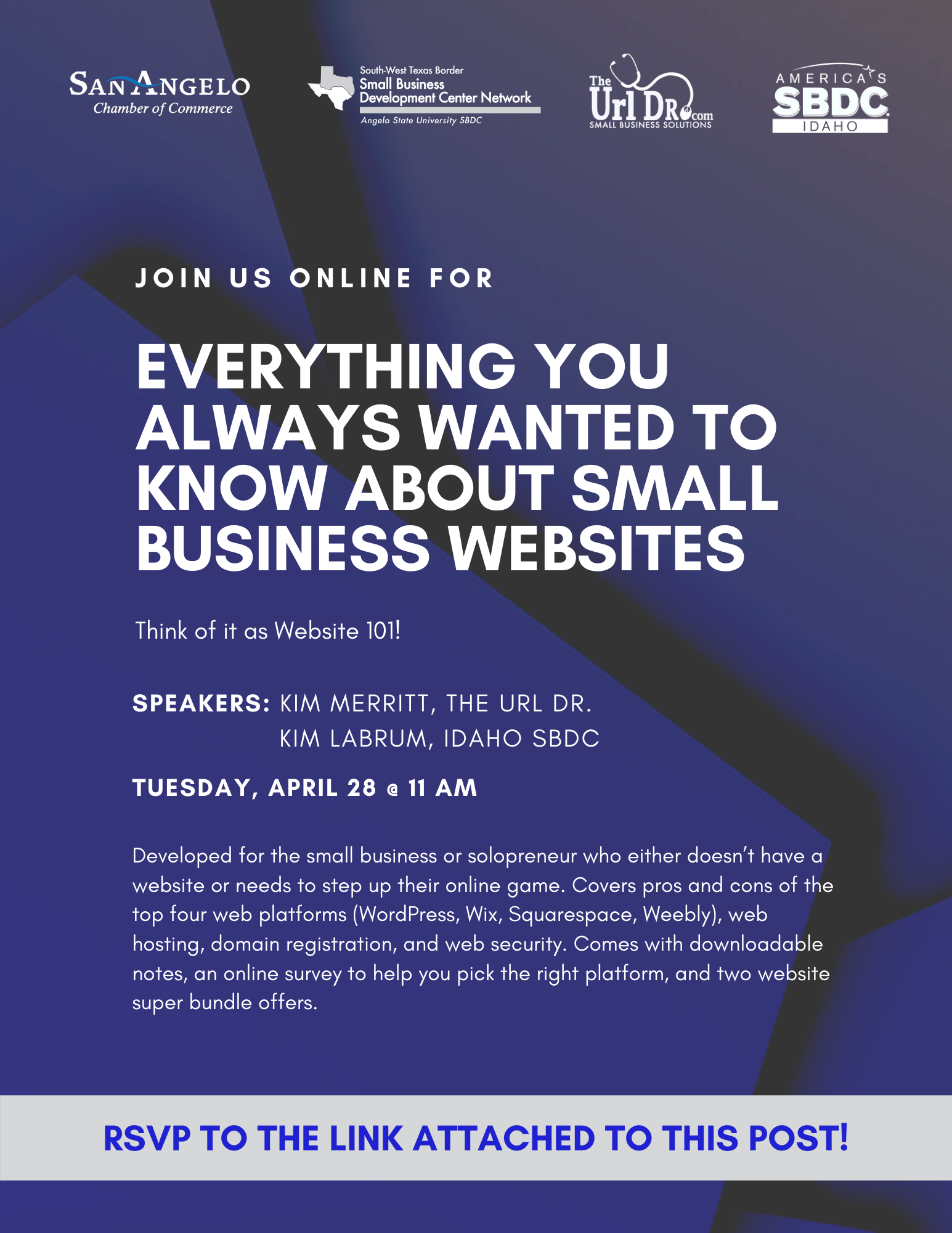 Website 101 Webinar Flyer