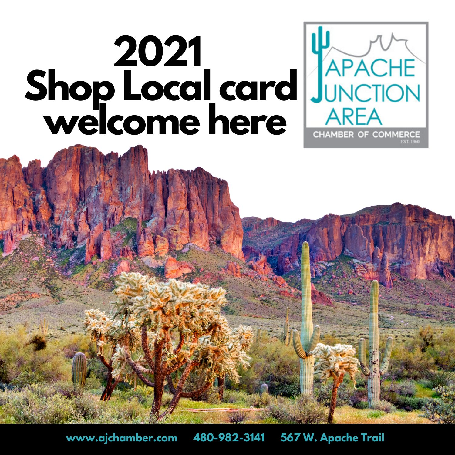Shop Local Cling 2021