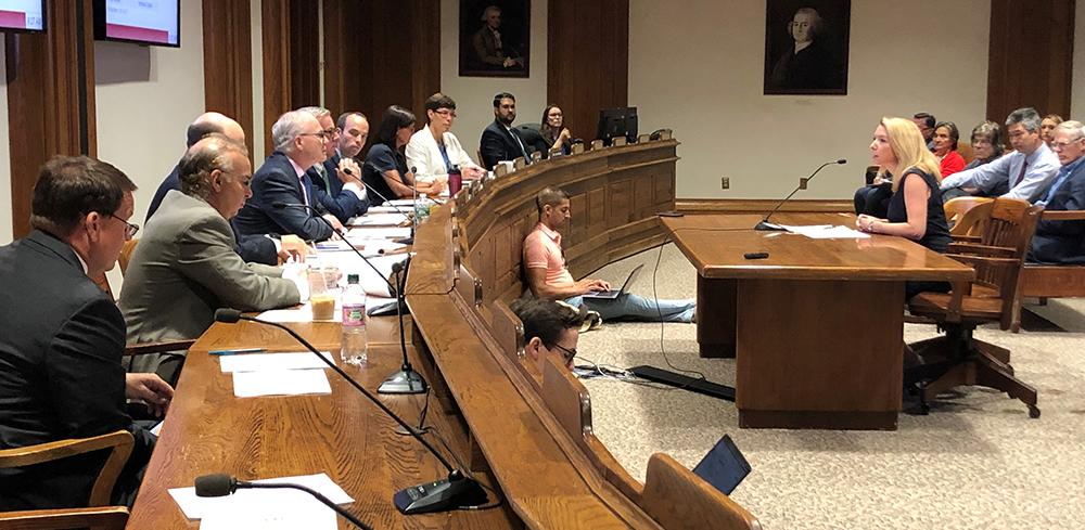 Tamara Small testifies at the State House