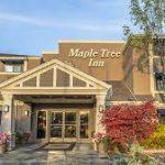 Maple Tree Inn Sunnyvale