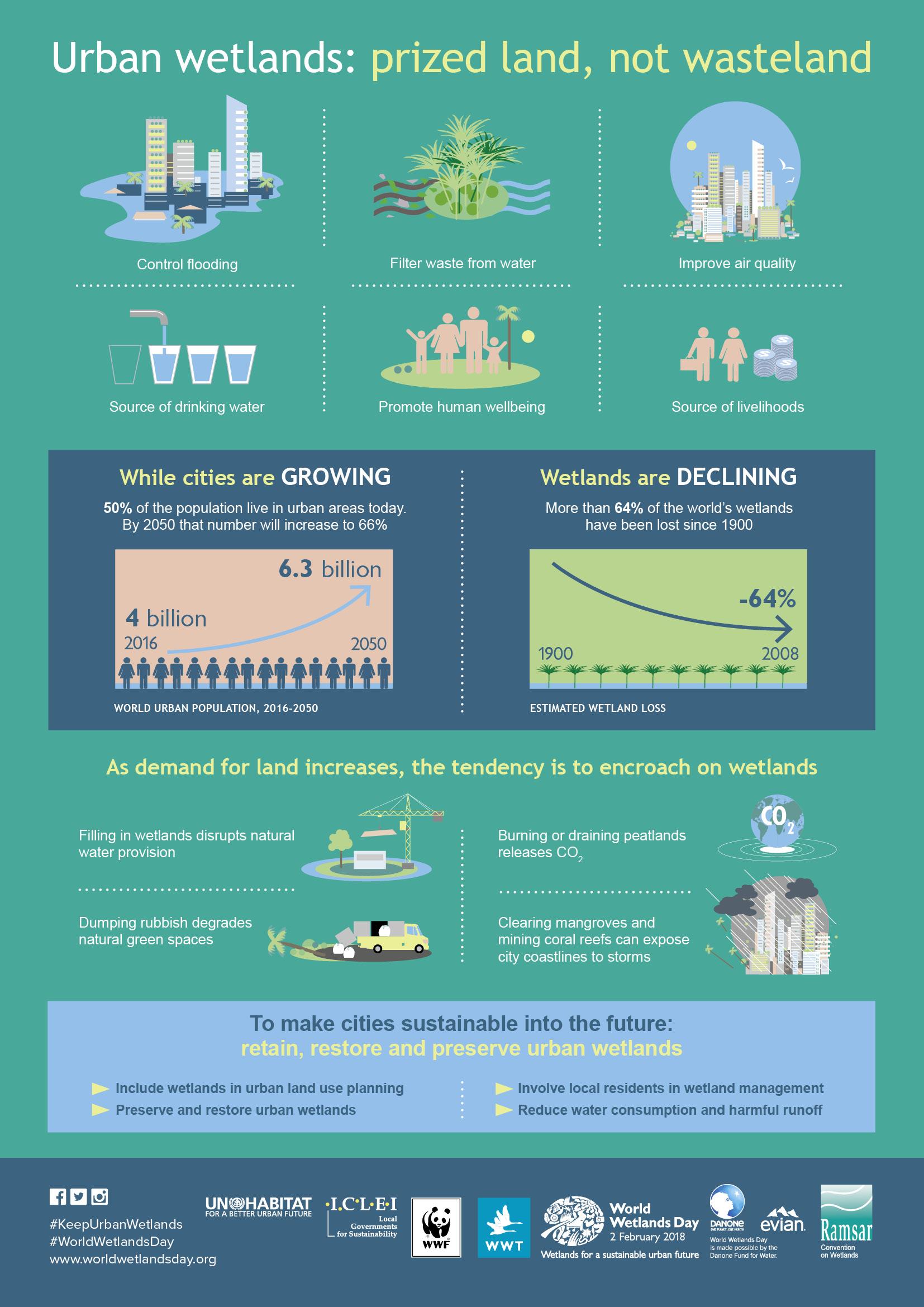 urban wetlands infographic