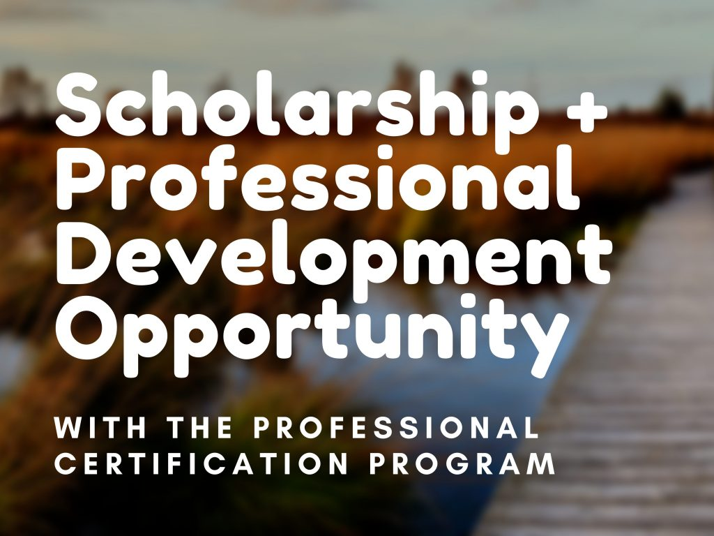 Scholarship + Professional Development Opportunity