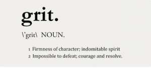 Grit dictionary meaning