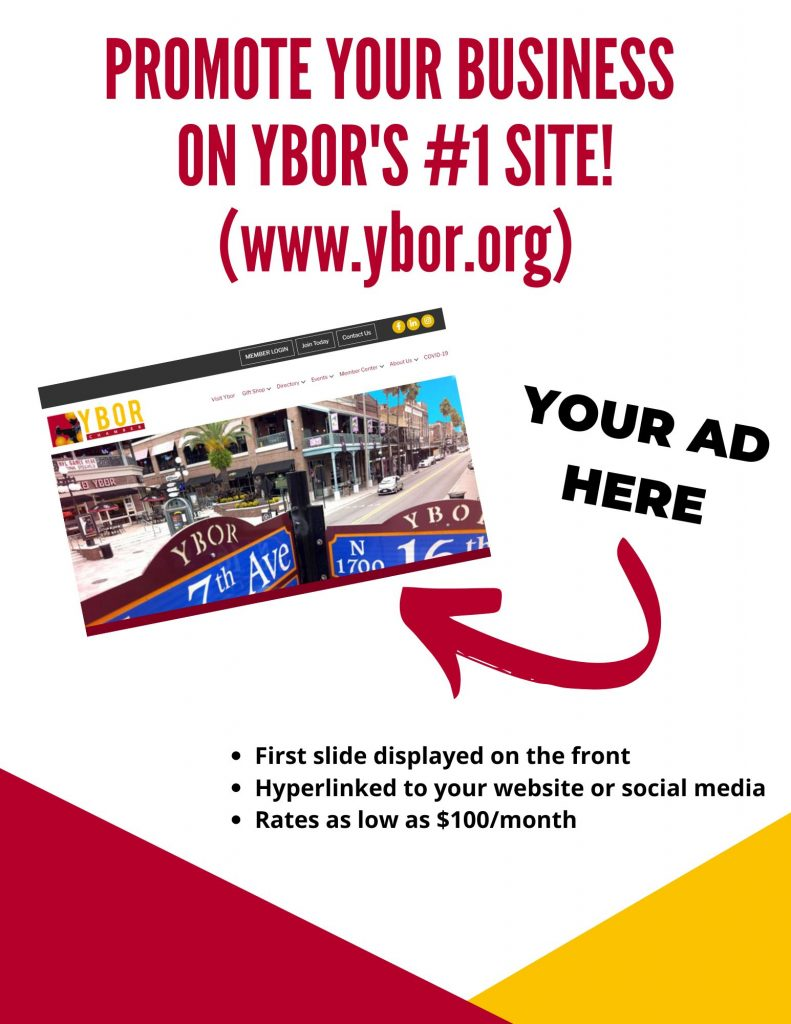 Website Ad Flyer