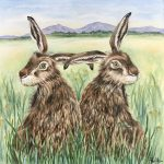 Perri Mason, Hare 2 (Hare Squared)