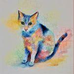 Juliette Swenson, Square Cat