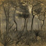 George S. Gati, Mysterious Forest