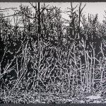 Susa Nawrocki, Landscape 16