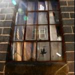 Karen Covey, Rusted Window