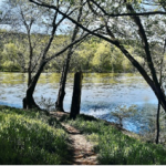 Robert Copelan, View at the River