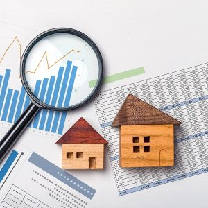 Real Estate Trends or Issues icon