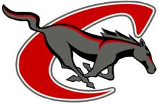 chisum logo