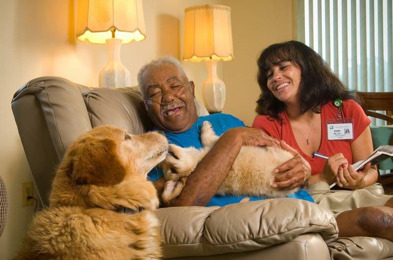 home care patient