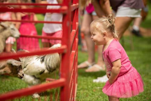 Little girl at petting farm