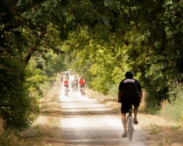 Glacial Drumlin Trail, bikers riding down trail happily