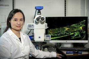 Dr. Ying Yang