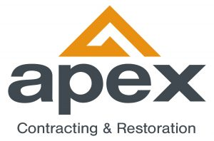 APEX_logo 50% (002)