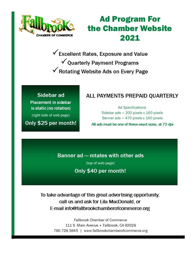 Web Ad Program Flyer