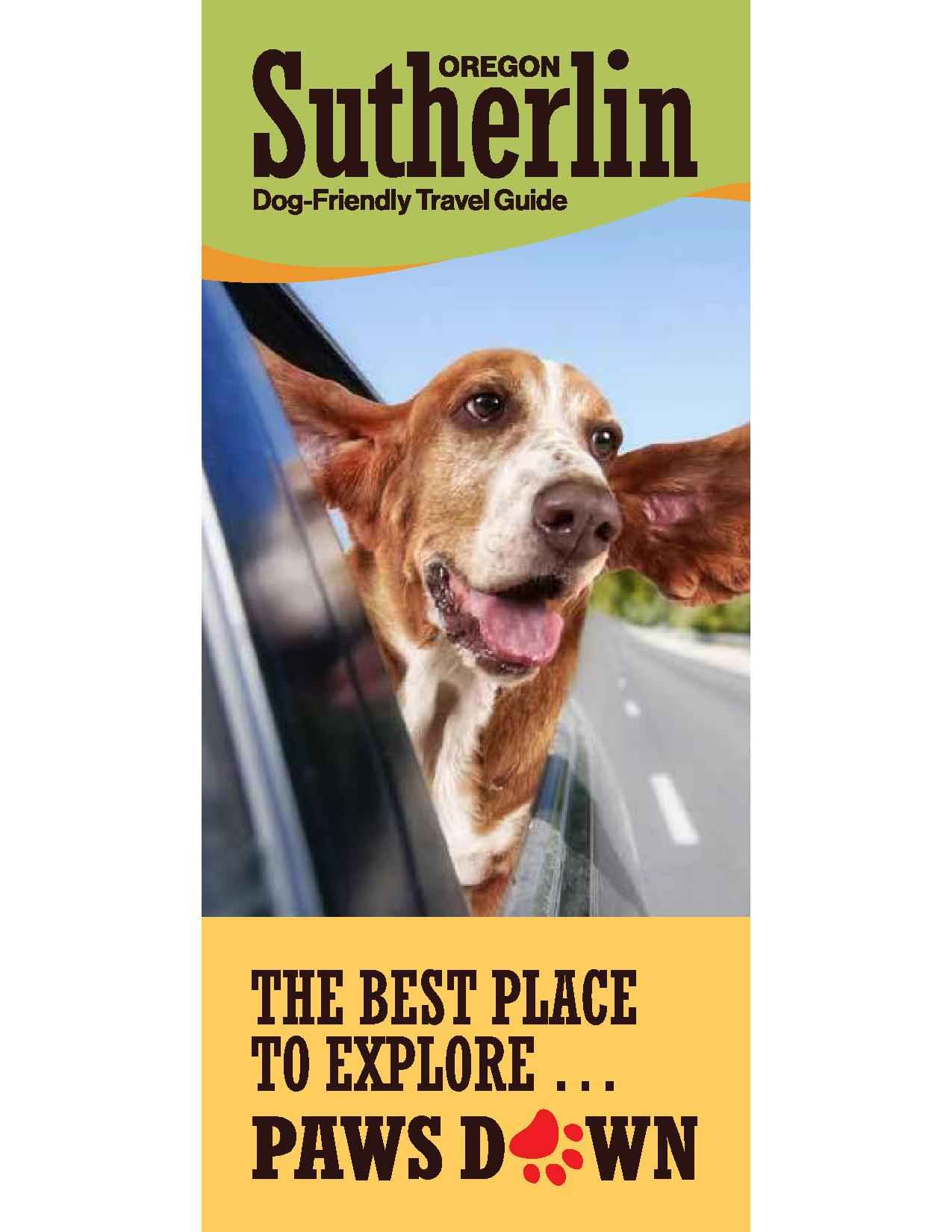 Dog-Friendly Travel Guide