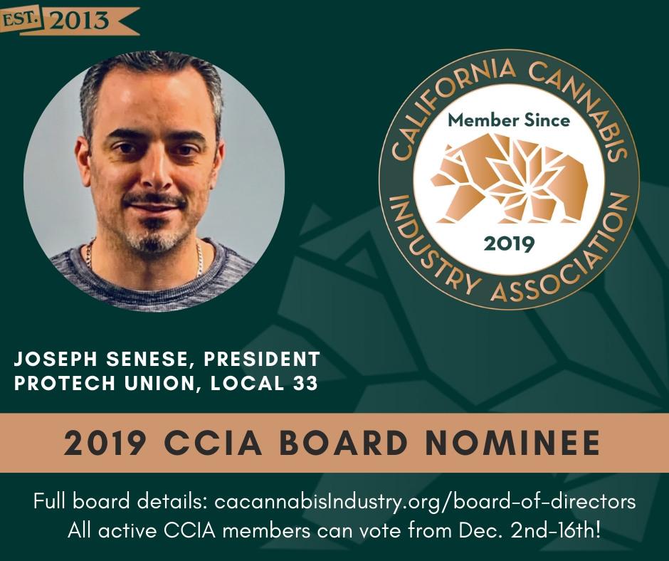 CCIA Board Nominees (9)