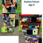 9 Yr Old Audrey Falcon